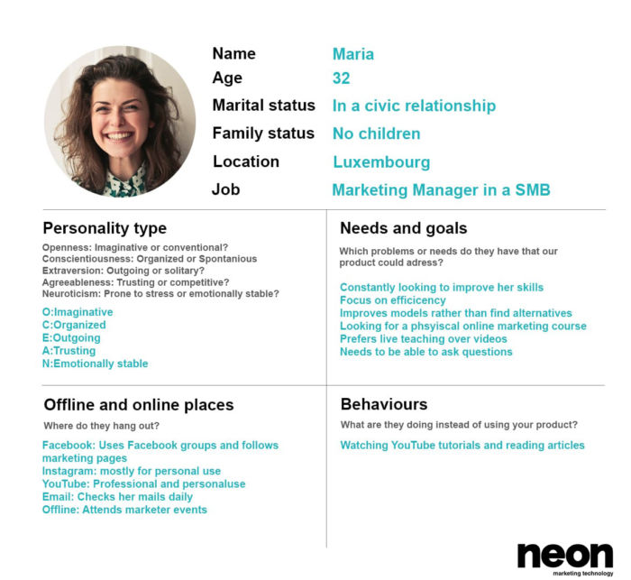 Persona Example from Neon Marketing